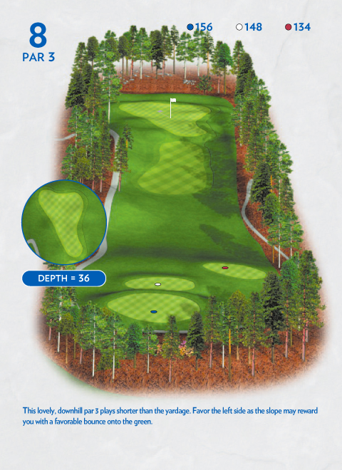 A map of hole 8 at the Lakemont Course